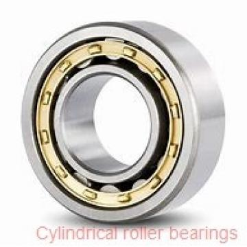 110 mm x 200 mm x 38 mm  SKF NUP 222 ECP  Cylindrical Roller Bearings