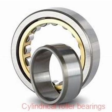 20 mm x 52 mm x 15 mm  SKF NJ 304 ECP  Cylindrical Roller Bearings