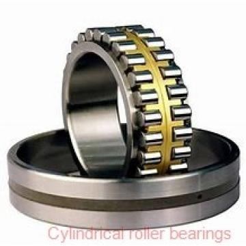2.559 Inch | 65 Millimeter x 5.512 Inch | 140 Millimeter x 1.89 Inch | 48 Millimeter  SKF NU 2313 ECML/C3  Cylindrical Roller Bearings