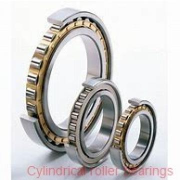 60 mm x 130 mm x 31 mm  SKF NJ 312 ECP  Cylindrical Roller Bearings