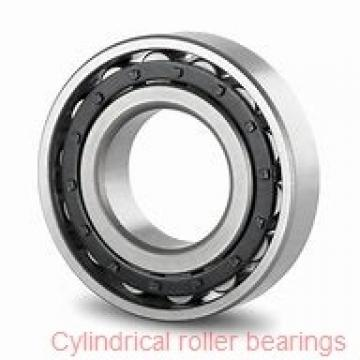 3.15 Inch | 80 Millimeter x 6.693 Inch | 170 Millimeter x 1.535 Inch | 39 Millimeter  SKF NU 316 ECP/C3  Cylindrical Roller Bearings
